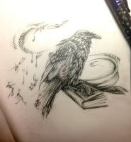 The crow`s book by sedance