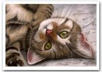 Tabby Kitten Pastel Painting by art-it-art