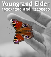 Young and Elder by Appl3ju1ce