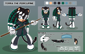 Terra Reference Sheet .:Commission:. by Pendulonium