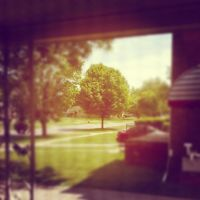 Looking out the front door by Thrumm