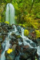 Defiance Falls by davidrichterphoto