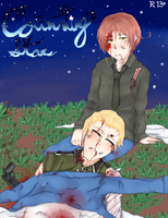 Counting Starts- APH Doujinshi cover by cutecat54546