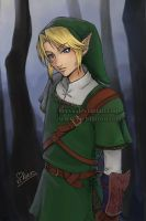 Link-Color-Twilight Princess by keevs
