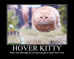 Hover Cat by RubytheWitch