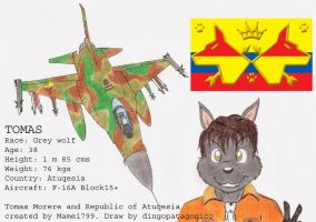 Tomas and his F-16 by DingoPatagonico