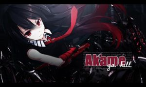 Akame ga kill by LeslieWinC
