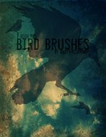 Hi Res Bird Brushes by andythecompany