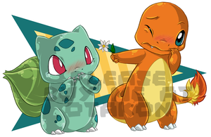 Charmander + Bulbasaur - Blush