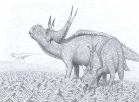 Diabloceratops couple and distant Lythronax by JuulRex