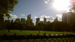NYC Central Park 1 by niggyd