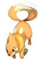 Buizel by bluekomadori