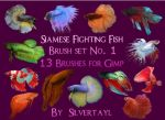 Siamese Fighting Fish Set 1 by Silvertayl