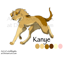 Kanye reference sheet OLD by xAshleyMx