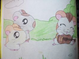 Hamtaro by DustyDisaster