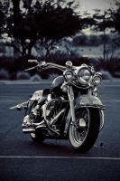 harley davidson heritage by SurfaceNick