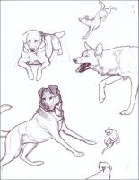 Page o' Drawings by nikkiburr