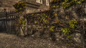 HDR images by Timeloop by TimeloopOfficial