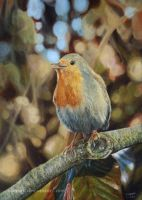 Singing Robin by Vanory