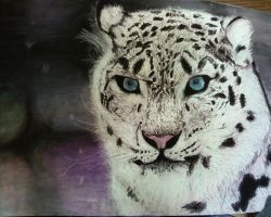 SNOW LEOPARD by 03ketch03