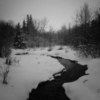 Winter Trails by theCAB