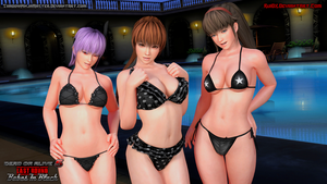 DOA Babes In Black 3 (Blender Cycles) by ShadowNinjaMaster