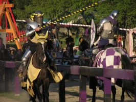 Labor Day Joust 4 by TheMightyQuinn