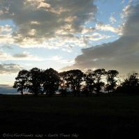 Earth Trees Sky by EricForFriends