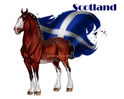 Horse Hetalia:  Scotland by MUSONART