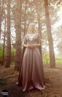 Lady Of Lorien by grinningsun