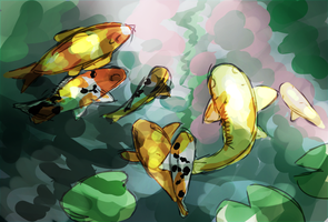 Koi Fish by coffeeatthecafe
