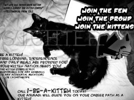Join the Kitteh Corps Today by Sighter