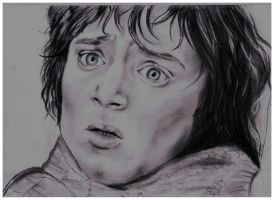 Frodo Baggins - Fear by MikkoChan