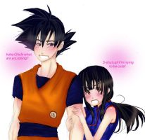 Goku and Chichi request by DramaQueen14