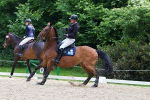 Horse Bolting Disobedience Prep Arena 2 by LuDa-Stock