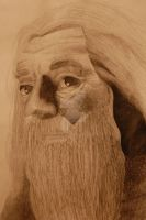 Albus Dumbledore by YouTheWho