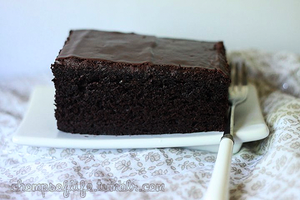 Gluten Free Chocolate Cake by chompsoflife