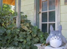 My Neighbor Totoro Plushie by 20f3