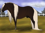 SFS Margera by Sorrel-Feather