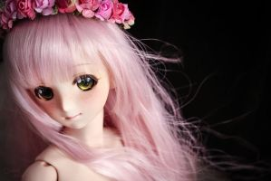 Melocoton . Peach tree by OrchidDolls