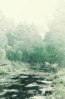 marshland by eviscuit