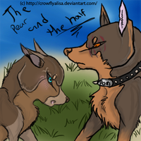 Doberman drawing- DO NOT STEAL by GalaxyCrowButt