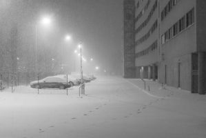 snowstorm at night by dzorma