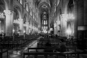 Notre Dame by Shadoisk