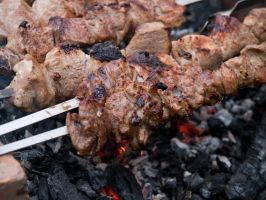 Meat Skewers by thesmallwonder