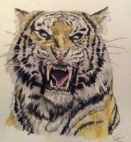 Tiger Attack by Lady-in-Ink