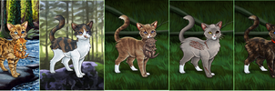 more warrior cat adoptables by thunderwolf2372