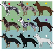 All the Australian Dogs [5/9 Open] by Alcemistnv