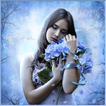Forget Me Not... by FrostAlexis