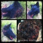 Severed wolf head prop by Sharpe19